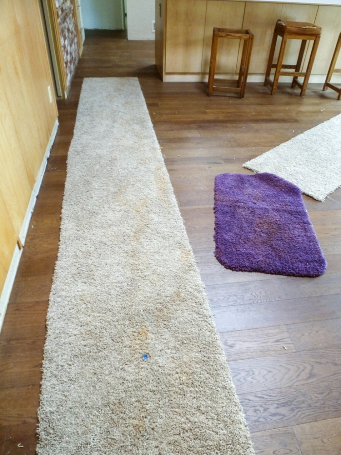 Carpet remnants and mud