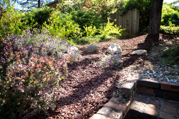 A nice little shady rock garden